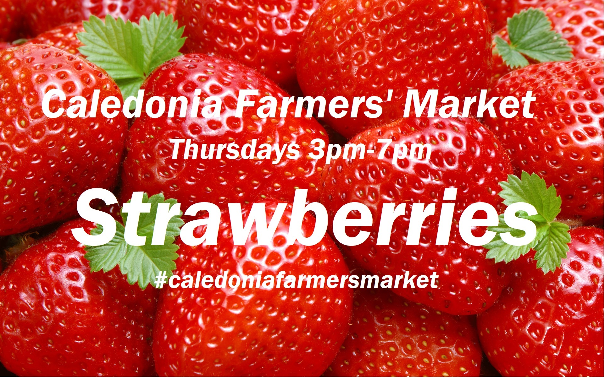 Caledonia FM strawberries